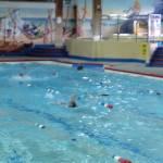 2015 North Cornwall Swimming Gala